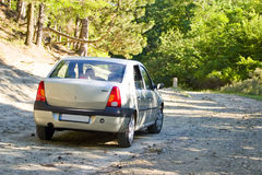 Car on forest road Royalty Free Stock Image