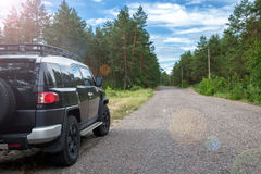 Car in the forest road Stock Image