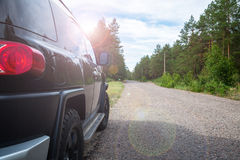 Car in the forest road Stock Photography