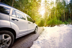 Car  in the forest road at sunset. Car trip in sunny forest road Royalty Free Stock Image