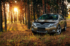 Car in forest at sunset Stock Photo