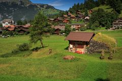 Mountain village Wengen, Switzerland. Car free mountain village Wengen in the Bernese Alps on a sunny day in summer. Wengen, Bernese Oberland, Switzerland Royalty Free Stock Photo