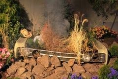 Car Garden Royalty Free Stock Photos
