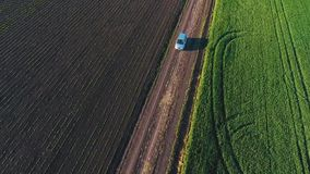 The car goes on a country road. Green wheat field. quadrotor filming. Krasnodar. HD stock footage