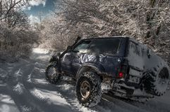 The car goes on the road in a snowy forest stock photo