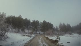 The car goes through the woods in bad weather in the winter. HD stock video