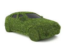 Car grass Royalty Free Stock Photos