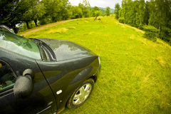 Car in a green field Royalty Free Stock Photos