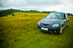 Car in green field Stock Photos