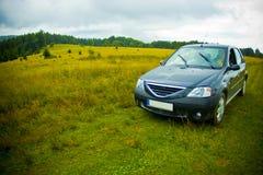 Car in green field stock photos