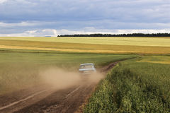 Car on ground road in the fields Royalty Free Stock Photos