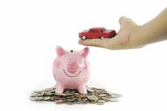 Car in hand with pink piggy bank Stock Photos