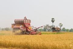 Car harvest. Fields in thailand Royalty Free Stock Photography