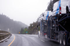 Car hauler semi truck carry cars on the trailer on rainy highway. A powerful car hauler semi truck transporting cars on a special two-level trailer along the Stock Image
