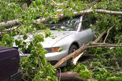 Car after hurricane Stock Image