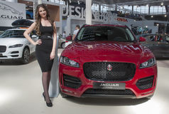 Car JAGUAR F-PACE Stock Photos