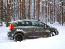 Car jammed in snowdrifts. Winter road in the forest, strong snowfall and jammed car Royalty Free Stock Photography