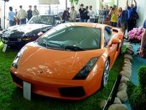 Lamborghini Gallardo Royalty Free Stock Images