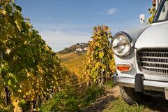 Car in Lavaux. The front of Peugeot car in vineyard at fall in Switzerland Stock Images