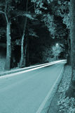 Car light trails in the woods Royalty Free Stock Images