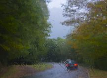 Car lights in beech forest. On the mountain Royalty Free Stock Photo