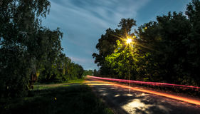 Car lights tracks on the road in forest at night. Stock Photo