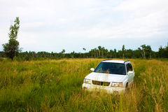 Car in a meadow Royalty Free Stock Images