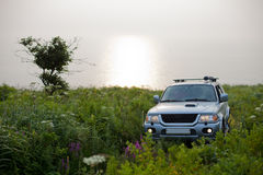 Car in a meadow Royalty Free Stock Photography
