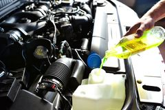 Car mechanic changes coolant on the vehicle royalty free stock photography