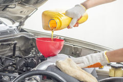 Car mechanic pouring new oil to engine. Royalty Free Stock Photography