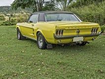 Car, Motor Vehicle, Vehicle, Automotive Design royalty free stock images