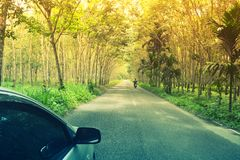 Car and motorcycle travel on green rubber plantation pathway i. N Asia . Travel concept background stock photography