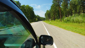 Car is moving across the forest in sunny day (POV) stock video footage