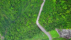 Car Moving along Curved Serpentinous Road among Green Lush Forest Trees in Taiwan. Aerial Top View. Shot with a DJI Mavic fps 29,97 4k stock video footage