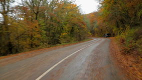 Car Moving In Autumn Forest Along Winding Road stock video