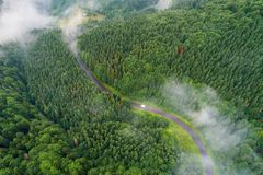 Car moving in forest. Aerial view. Road in green forest view from above. Transportation background royalty free stock image