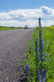 Car moving by rural road, focus on front roadside Royalty Free Stock Photos