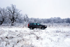 Car offroad in snow royalty free stock image
