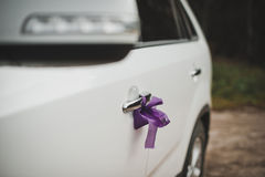 Car ornament 4. Royalty Free Stock Photos