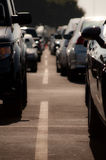 Car Parking. Full parking lot row at the end of afternoon Royalty Free Stock Images