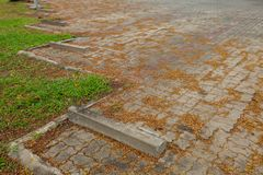 Car parking lot in the garden. At thailand Royalty Free Stock Photo