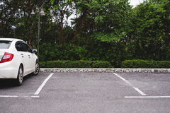 Car parking lots in public parks Stock Images