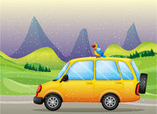 A car with a parrot Royalty Free Stock Photo