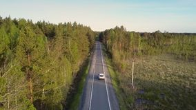 Car passes by open empty plot with bushes along road. Wonderful aerial view driving car passes by open empty bushy plot along road crossing deep wild pine forest stock video