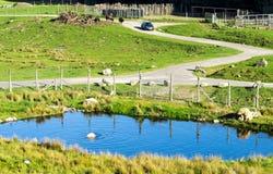 Polar Bear enclosure in Highland Wildlife Safari Park, Scotland royalty free stock photography