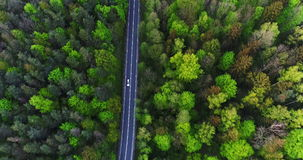 Car passing highway aerial view. Car passing highway aerial. Wide shoot of car moving route between forest. Holiday background 4K stock video