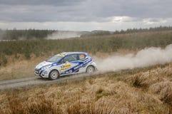 Car at Pirelli International Rally Stock Photos