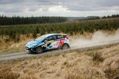 Car at Pirelli International Rally Stock Images