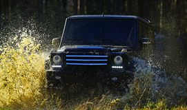 Car racing in autumn forest. Extreme, challenge and 4x4 vehicle concept. SUV or offroad car on path covered with grass Stock Photo