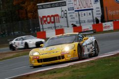 Car Racing(Corvette Z06,FIA GT) Royalty Free Stock Photo